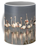 Greater Flamingos At Laguna De La Fuente De Piedra Coffee Mug