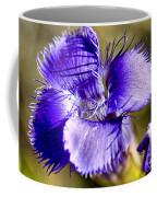 Greater Fringed Gentian Coffee Mug