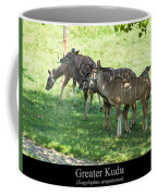 Greater Kudu Coffee Mug