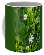 Greater Stitchwort Stellaria Coffee Mug