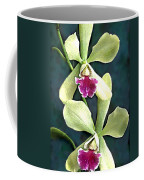 Green And Purple Cattleya Orchids Coffee Mug