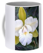Green And White Cattleya Orchid Coffee Mug