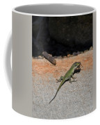 Green Anole Lizard Vs Wolf Spider  Coffee Mug
