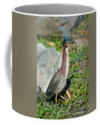 Green-backed Heron Butorides Virescens Coffee Mug