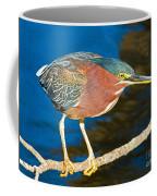 Green-backed Heron Coffee Mug