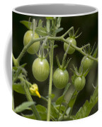 Green Cherry Tomatoes On The Vine Coffee Mug