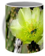 Green Cholla Beauty Coffee Mug