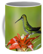 Green-crown Brilliant Female Coffee Mug