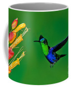 Green-crowned Woodnymph Coffee Mug