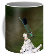 Green Damselfly  Coffee Mug