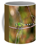 Green Dragonfly On Twig Square Coffee Mug