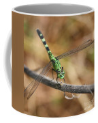 Green Dragonfly Square Coffee Mug