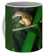 Green Eye'd Frog Coffee Mug