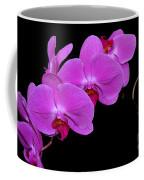 Green Field Sweetheart Orchid No 2 Coffee Mug
