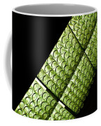 Green Glass Coffee Mug