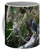 Green Heron 1 Coffee Mug