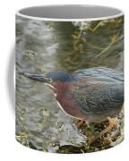 Green Heron On The Lookout Coffee Mug