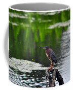 Green Heron Perch Coffee Mug