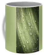 Green Leaf With Raindrops Coffee Mug