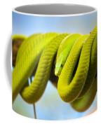 Green Mamba Coiled Up On A Branch Coffee Mug