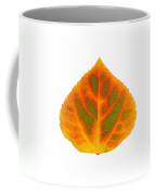 Green Orange Red And Yellow Aspen Leaf 5 Coffee Mug