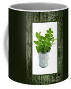 Green Oregano Herb In Small Pot Coffee Mug