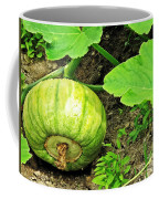 Green Pumpkin Coffee Mug