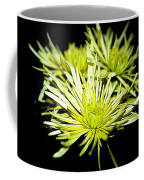 Green Spider Mums Coffee Mug