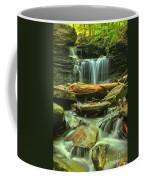 Green Spring Cascades Coffee Mug