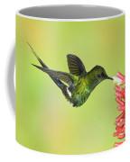 Green Thorntail Hummingbird Coffee Mug