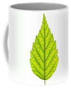 Green Tree Leaf Coffee Mug