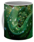 Green Tree Python Curled Coffee Mug