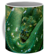 green tree python Macro Coffee Mug