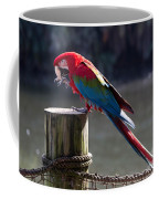 Green-winged Macaw Coffee Mug