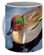 Green Winged Teal  Duck  Coffee Mug