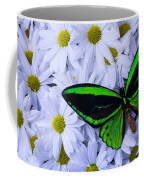 Green Wings In The Mums Coffee Mug