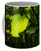 Greenbrier Glowing In The Sun Coffee Mug