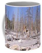 Lonely Cabin Coffee Mug