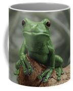 Greeny 4 Coffee Mug