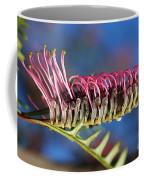 Grevillea Pink Australian Coffee Mug