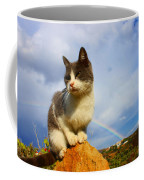 Grey Cat And Rainbow Coffee Mug