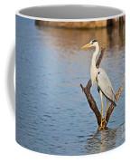 Grey Heron  Ardea Cinerea Coffee Mug