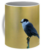 Grey Jay  Coffee Mug