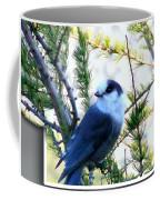 Grey Jay Watching - Oob Coffee Mug