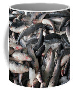Grey Mullet Fish For Sale At A Fish Auction Coffee Mug