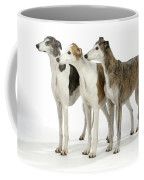 Greyhound Dogs Coffee Mug