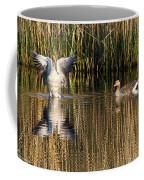 Greylag Goose Family Coffee Mug