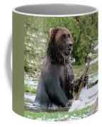Grizzly Bear 6 Coffee Mug