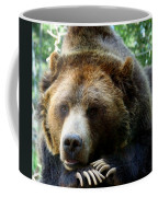 Grizzly Bear At Rest In Colorado Wildneress Coffee Mug