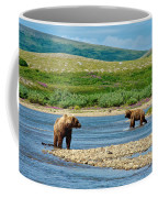 Grizzly Bear Communication In The Moraine River In Katmai  Np-ak Coffee Mug